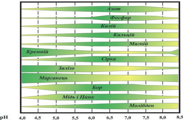 Доступність елементів живлення для рослин залежно від реакції ґрунту (за даними F. Trough)